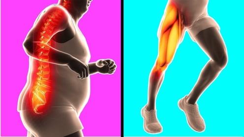 运动后为什么会肌肉酸疼?这个视频解开了我多年疑惑!