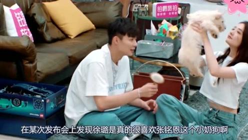 张铭恩被要求当众环抱徐璐,徐璐下意识的举动太甜,喜欢装不出!
