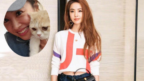 蔡依林与小猫贴脸直言想养 粉丝调侃狗子会吃醋