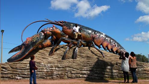 地球上最大的龙虾,虾钳比人的胳膊还粗,网友:味道应该不错!