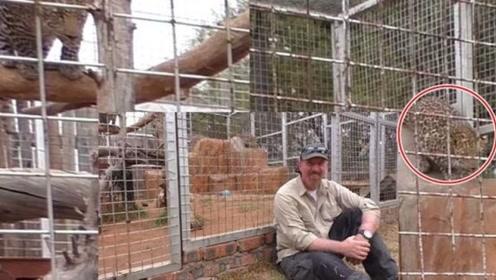 为什么不能背对动物?饲养员亲自示范,看到结果我信了!