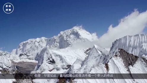 喜马拉雅山遇到野人,身高足足有2米,科学家揭开野人的真面目!