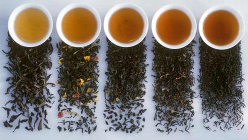 新研究:定期喝茶或能提高大脑效率