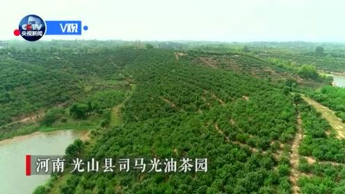 独家视频丨习近平:农民增收致富 绿色发展是一个好路子