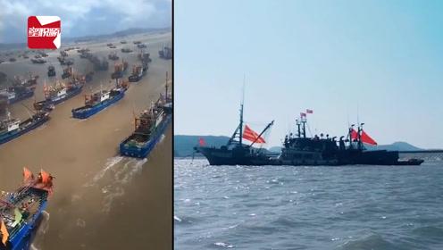 最新鲜的海鲜就要来了!温州无数艘渔船出海:场面堪比电影大片