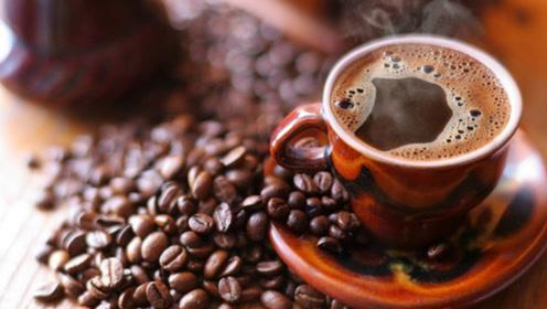 怎样分辨真假蓝山咖啡?咖啡师:不用分辨,你买的基本都是假的!
