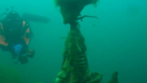 美国男子潜水,意外发现一具骷髅,被死死的固定在铁板上!