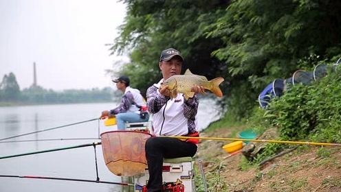 一个大黑漂,钓友果断扬竿,成功钓获一尾野生大鲤鱼!