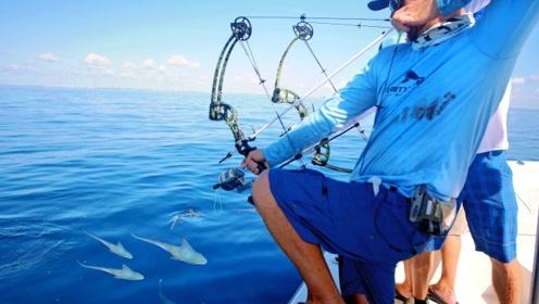 小伙用弓箭抓小鲨鱼,下一秒鲨鱼妈妈赶来,一家人就要整整齐齐