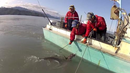 这样的日子多潇洒,三个人的渔船,随便捕点鱼也比打工赚的多