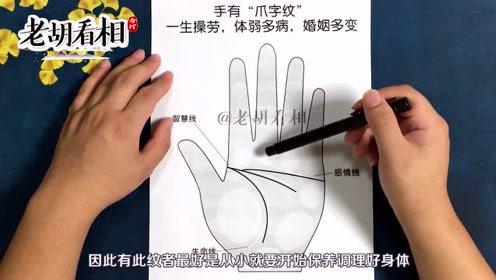 什么是爪子掌?爪子掌的人婚姻财运好吗?老胡看相