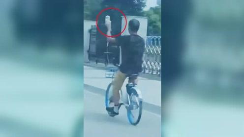 男子手举输液吊瓶单手骑共享单车 路人吓出一身冷汗