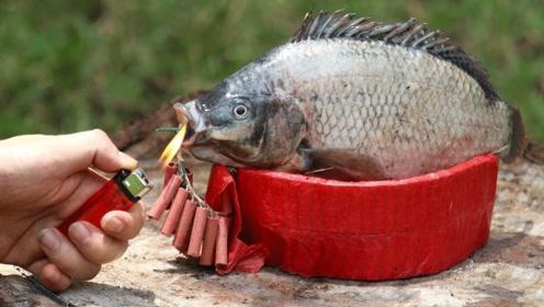 将鞭炮塞进鱼嘴里点燃会怎样?老外好奇测试,结局显而易见