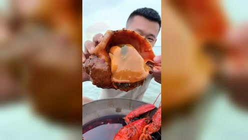 三斤多的大海螺,要从哪开始吃?