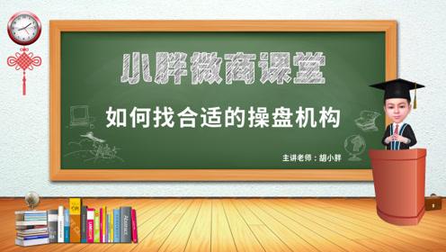 NO.66 胡小胖:微商品牌如何选择操盘机构 -小胖微商课堂