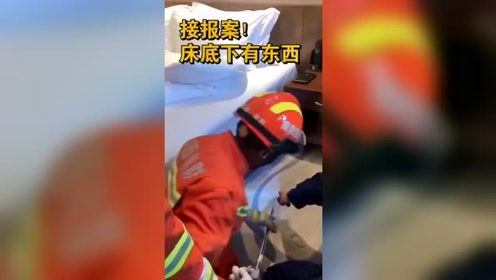 消防员接警称床下有蛇,抓住后差点崩溃