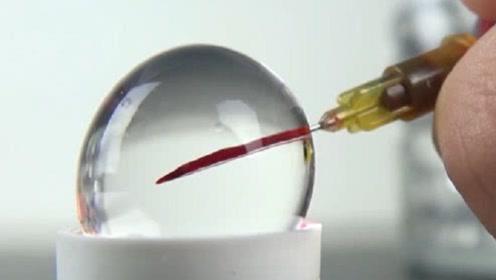 水宝宝也有生命吗?老外测试给水宝宝打针,结果画面太惊艳