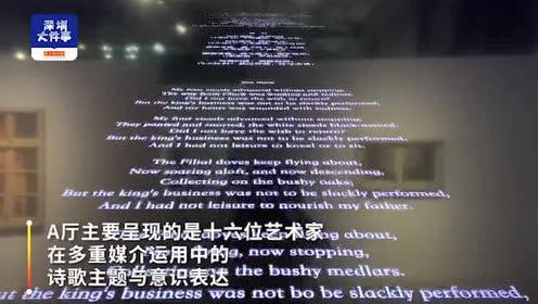 """看28位名家如何呈现诗意,""""共生:诗与艺术的互文""""展深圳开幕"""