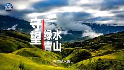 中央电视台农业农村频道正式开播