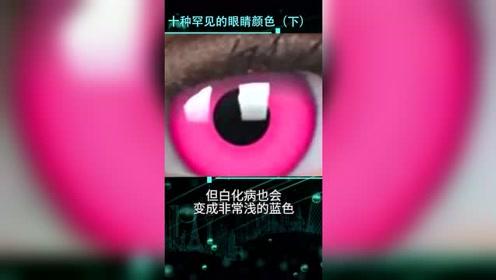 10种罕见的眼睛颜色,你一个都没见过(下)