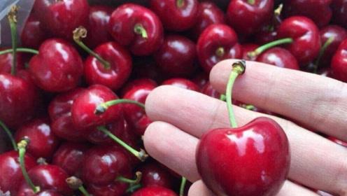 买的樱桃能不能直接吃?很多人都错了,赶快叮嘱家里人