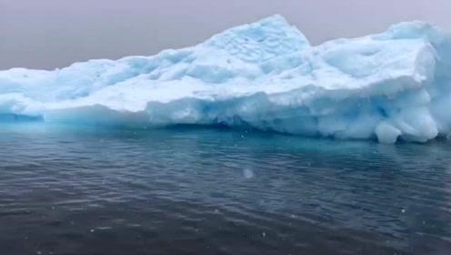 她游南极22天,写10万字书呼吁环保
