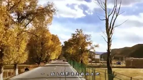 10月去西藏能看到什么,金色西藏了解一下,会有不同惊喜