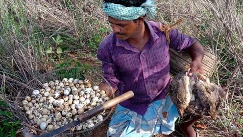 印度人野外捡来几十个鹌鹑蛋,用竹筒烹饪,做法真特别!