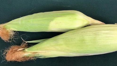 玉米须有很大好处,这么多年都傻傻扔掉太可惜了,记得提醒家人!