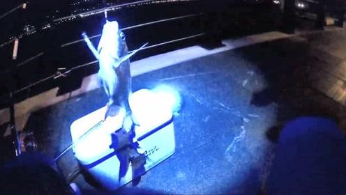 前打钓鱼,通宵钓鱼的中毒太深,黑鲷鱼石斑鱼