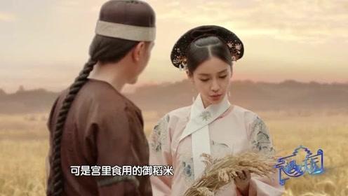 冯绍峰杨颖重温双季稻的起源,睿智皇上为天下开粮