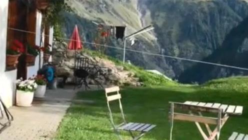 """瑞士网友的""""简陋住宅"""",看到这一幕,我承认我真的嫉妒了"""