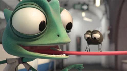小蜥蜴跟粉蜥蜴表白,想要用苍蝇表示心意,结果被害的丢了性命