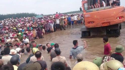 越南海边突现庞然大物, 引得数百人围观,连挖掘机都出动了!
