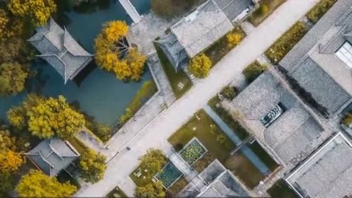 马云捐1亿保护西溪湿地:要打造得像纽约中央公园