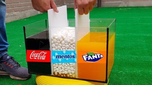 将可乐和芬达同时接触曼妥思,会是什么场景?结果让人有些意外!