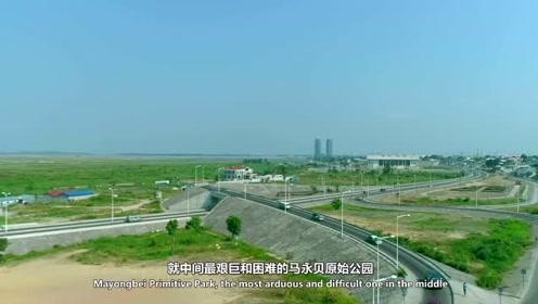 刚果这条公路,法国人18年都没修好,中国却只用了8年
