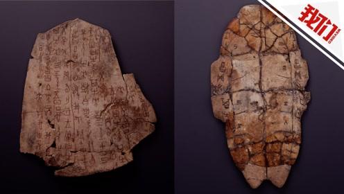 甲骨文发现120周年 国博首次大规模展示馆藏甲骨