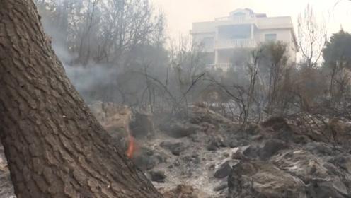 黎巴嫩贝鲁特南部爆发数十年来最严重森林火灾
