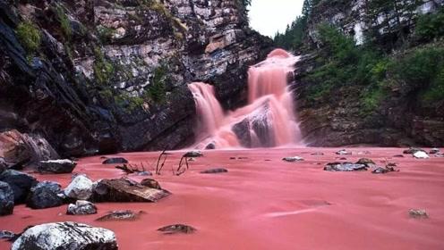 加拿大的幸运粉色瀑布,每年只允许参观2小时,瀑布界的锦鲤