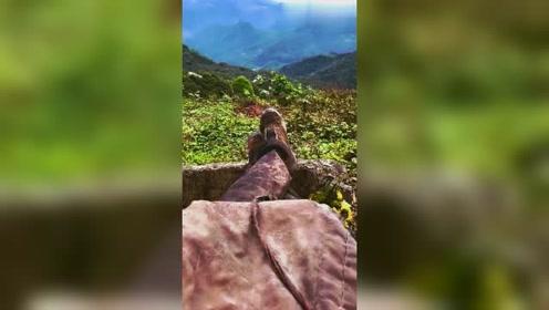 大山里小姐姐的生活,独自坐山头看风景,网友:景美人更美