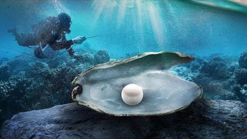 """普通""""蚌壳""""能形成""""珍珠""""吗?本以为异想天开,真相却令人眼红!"""