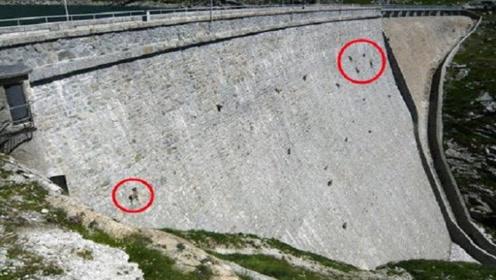 古老的大坝上密密麻麻,原以为是人在施工,走近一看根本不是人
