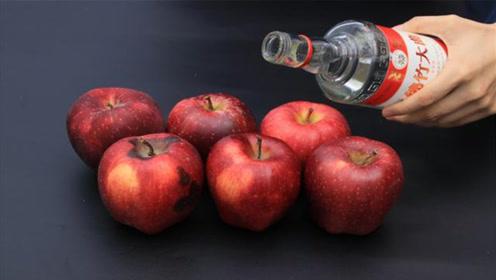 苹果上倒点白酒,真是厉害了,一般人不懂怎么回事,立马学学!