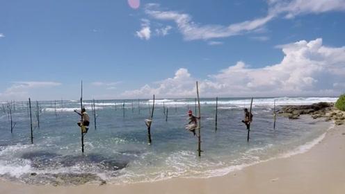 独一无二的钓鱼方式,不需要任何鱼饵,大鱼就自动上钩!