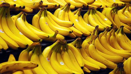 外国两个老顽童用2000根香蕉玩游戏比赛,这真的是暴遣天物啊!