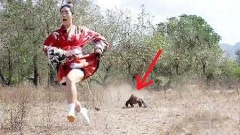日本女子,作死勾引科莫多巨蜥追逐自己,镜头拍下惊险过程
