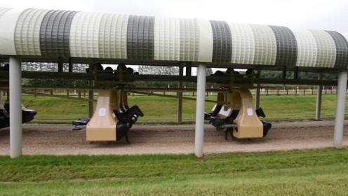 老外发明全新训练赛马神器,能最大程度预防马儿受伤,科技感十足