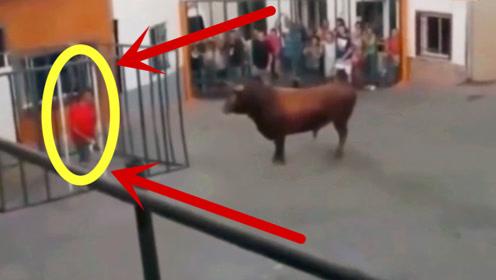 无底线!红衣男作死挑衅公牛,不出5秒,下体受重创