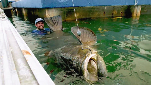 折腾大半天,终于钓获了这条巨型石斑鱼,看到这幕,太令人激动了